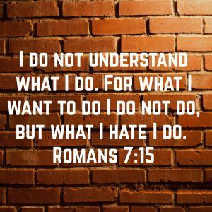 For what I want to do I do not do, but what I hate I do. 16 And if I do what I do not want to do,